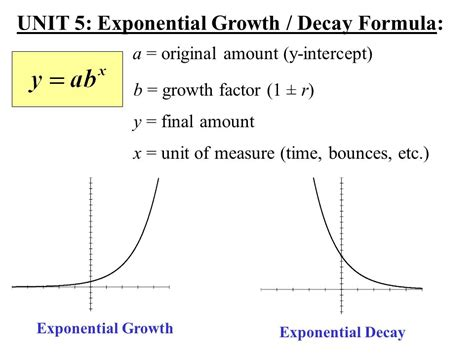 worksheet on exponential growth and decay breadandhearth