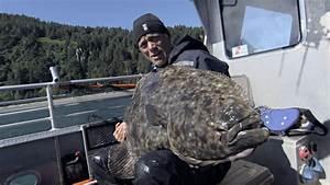 Holy Halibut! Jeremy Reels In Monster Alaskan Killer ...