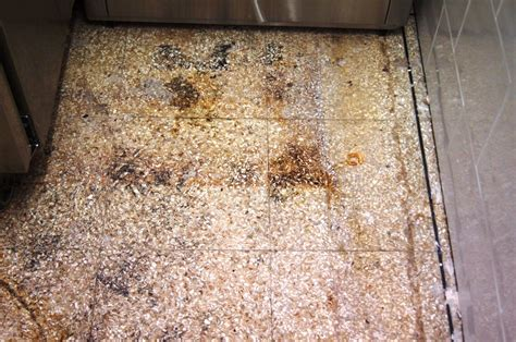 clean terrazzo floor stains cleaning services tile doctor lancashire