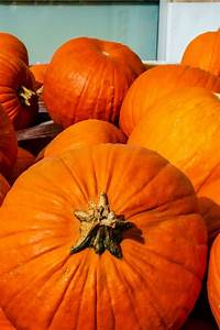Pumpkins, Health, Benefits, And, Nutritional, Breakdown