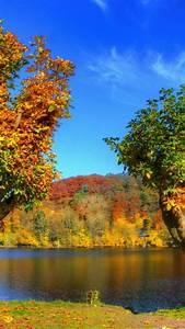 fall iphone wallpaper HD  Fall