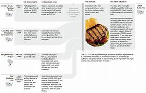 Anatomy Of A Burger - Graphic