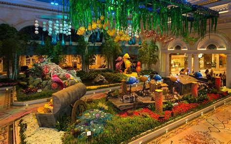 bellagio conservatory brings underwater to the