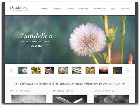 Best Photographer Website by 12 Best Websites Hosts Images On Photography