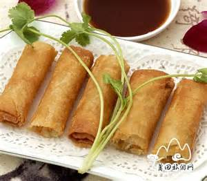 Chinese Food Spring Roll