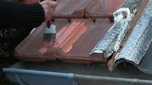 Peinture Pour Toiture : etancheite toiture peinture d 39 etancheite reparations ~ Melissatoandfro.com Idées de Décoration