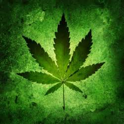 Le Pour Cannabis by Cannabis Se Faire Aider Pour En Sortir Fil Sant 233 Jeunes