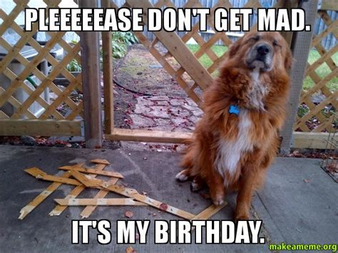 Dont Get Mad Meme - pleeeeease don t get mad it s my birthday make a meme