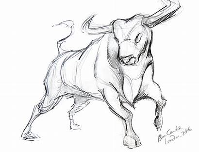 Bull Sketch Pencil Drawing Sketches Paintingvalley