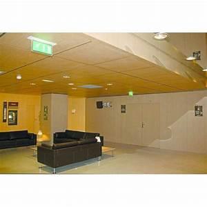 Base De Données Marques : panneau acoustique perfor base de bois pour paroi ou plafond tavaperf tavapan ~ Medecine-chirurgie-esthetiques.com Avis de Voitures
