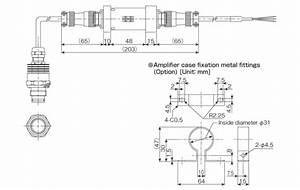Sanitary Pressure Transmitter For Filling Machines  Screw
