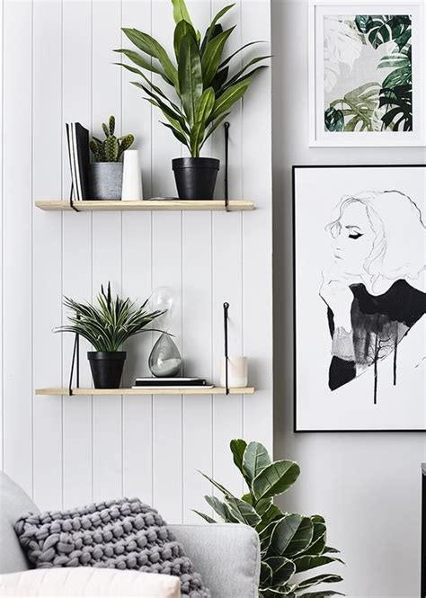 chic ways  rock plants   interiors digsdigs