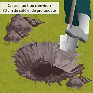 Taille De L Abricotier : planter un abricotier verger ~ Dode.kayakingforconservation.com Idées de Décoration