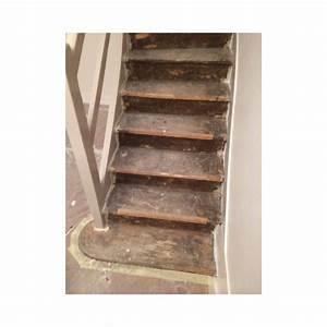 Recouvrir Marche Escalier : habillage ch ne escalier 69003 lyon ~ Premium-room.com Idées de Décoration