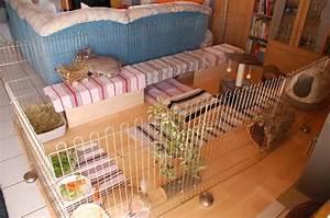 Sachen Selber Gestalten : wohnungsgehege bauen ~ Orissabook.com Haus und Dekorationen