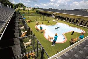 boarding pets at airports With best dog boarding facilities
