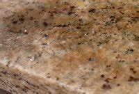 5 more myths about using marble and limestone in the home