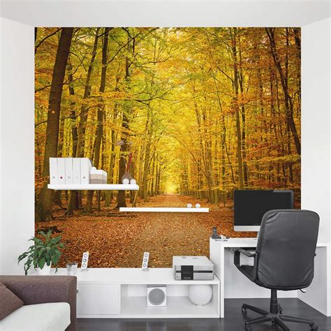 autumn forest path wall mural