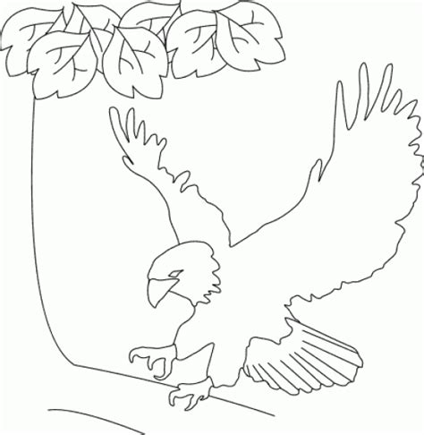 bald eagle template fourth of july coloring and activity pages bald eagle