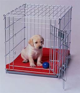 5 must know tips for crate training your puppy With best dog crates for puppies