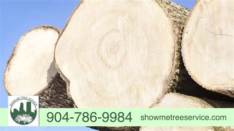 show  tree service tree removaltrimming stump
