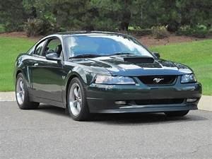 SOLD - 2001 Mustang Bullitt For Sale - Dark Highland Green - Michigan | Mustang Forums at StangNet