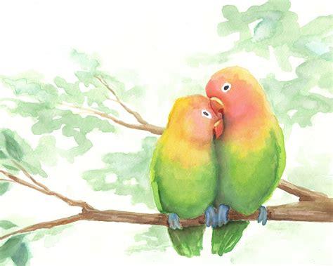 katrina colored pencil birds
