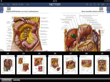 tavole netter recensione degli atlanti di anatomia umana netter e