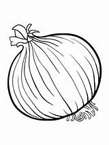 Onion Coloring Pages Colouring Fruits Vegetables Printable Drawing Spinach Template Broccoli Vegetable Sketch Print Sheets Templates Catfish Clipart Getdrawings Getcolorings sketch template