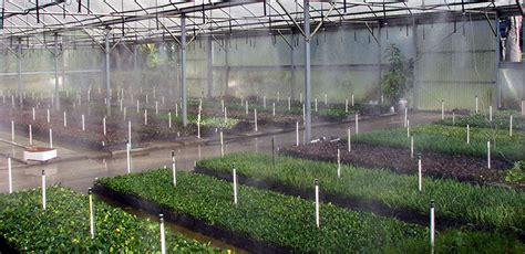 fogger senninger irrigation