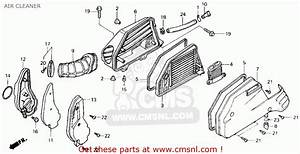 Honda Elite 250 Parts Diagram Html