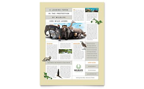 pets animals templates word publisher powerpoint