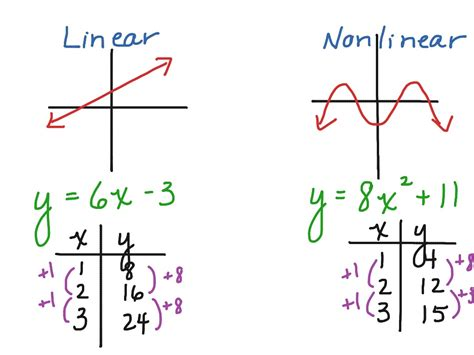 worksheet linear and nonlinear functions worksheet grass