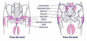 All You Need To Know About Pelvic Girdle Pain During