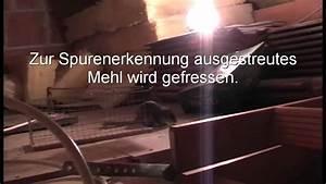 Marder Dachboden Geräusche : besuch auf dem dachboden youtube ~ Eleganceandgraceweddings.com Haus und Dekorationen