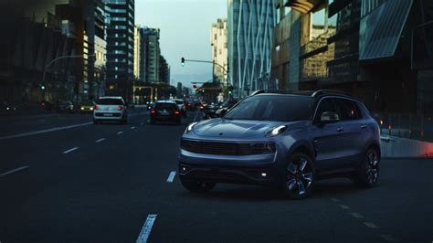 lynk   bows  chinese money swedish roots