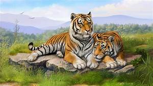 Tiger HD Wallpapers | Tiger Pictures Free Download 1080p ...