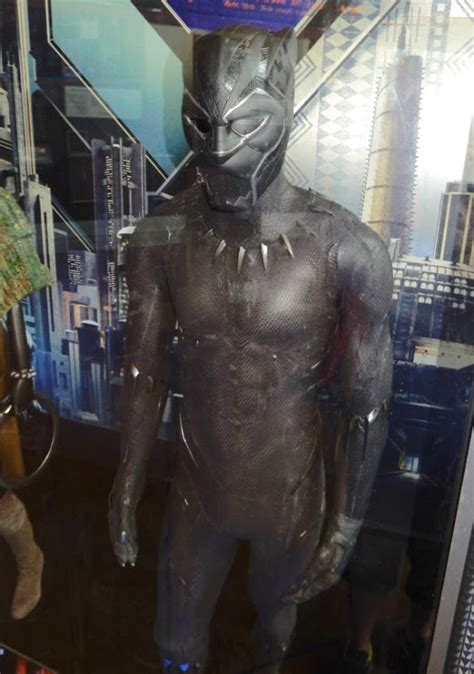 hollywood  costumes  props black panther nakia