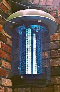 Electrical Light Fixtures Lighting Gallery Net Lit Up Lighting Klenatron Bug Buster