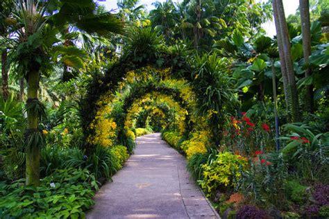 singapore botanic gardens voyage 224 singapour jardin botanique nostalasie