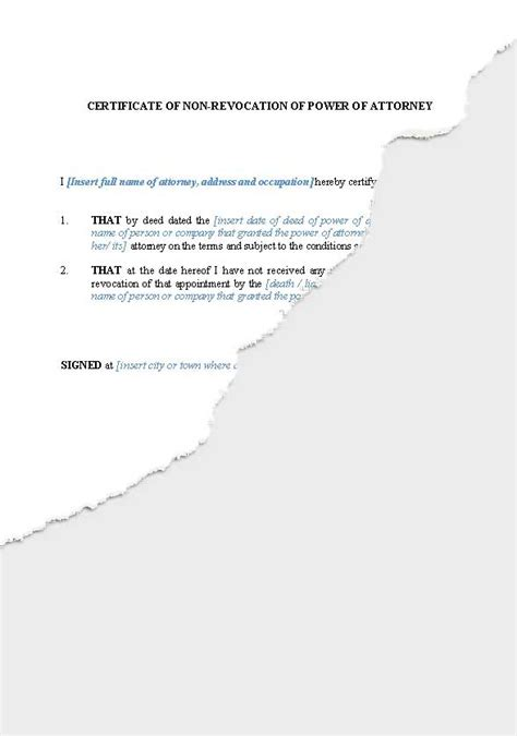 business companies  zealand legal documents