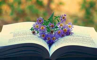 Reading Books Wallpapers Backgrounds Desktop Flowers Library