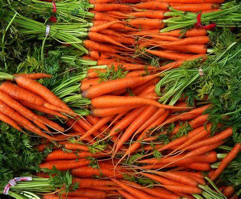 dzivei.lv - A vitamīns redzei. Kuri augi, augļi un dārzeņi ...