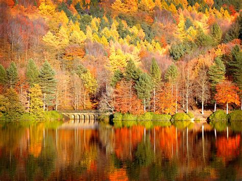Wallpaper High Resolution Fall Backgrounds by High Resolution Wallpaper Of Nature Photo Of Autumn