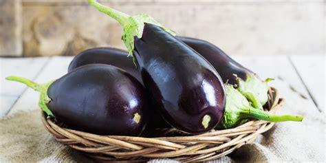 comment cuisiner aubergines comment cuisiner l 39 aubergine nos idées recettes