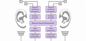 Alango  Applications  Hearing Enhancement