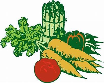 Vegetables Clip Vegetable Clipart Fruit Svg Cliparts