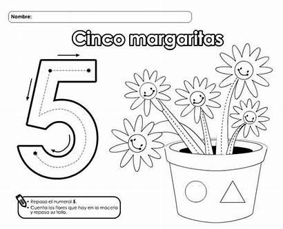Numero Imprimir Cinco Colorear Grafomotricidad Numeros Dibujos