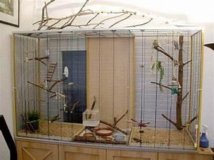Vogelkäfig Selber Bauen : ingrids welt wellensittiche volierenbau details der ~ Lizthompson.info Haus und Dekorationen