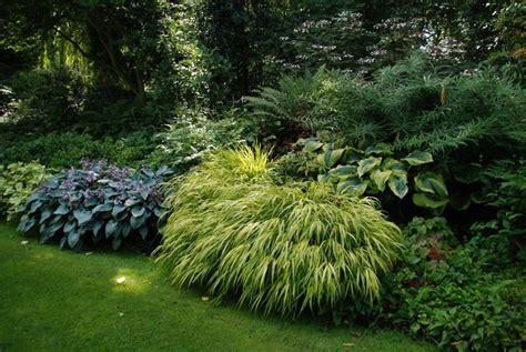 Immergrüne Gräser by Gr 228 Ser Spielen Auch Im Garten Beth Chatto Eine Gro 223 E